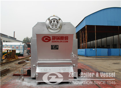 1.4MW 1.0MPa Chain Grate Boiler for Laundry